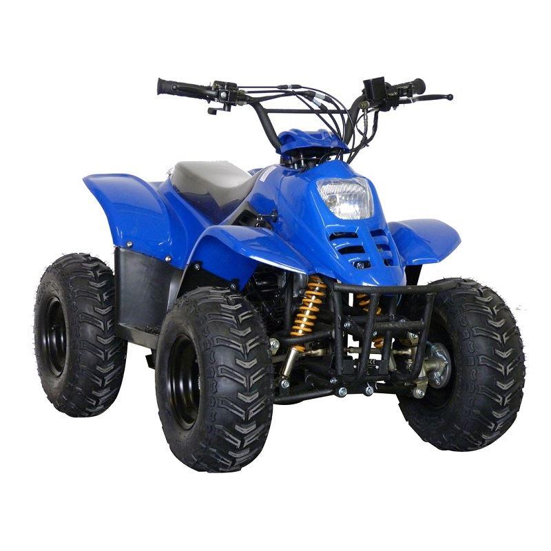 f06e031a31235 ATV 110 001 6